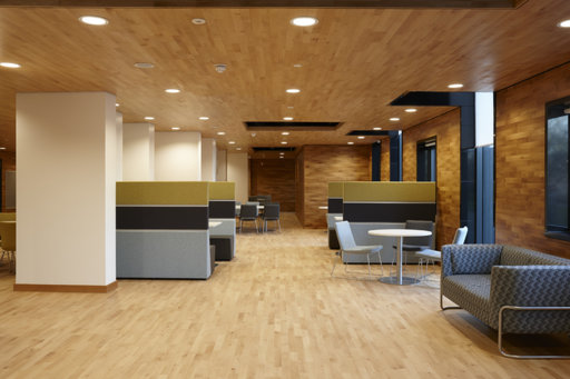 Junckers Beech SylvaKet Solid 2-Strip Wood Flooring, Silk Matt Lacquered, Harmony, 129x14 mm Image 2